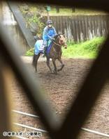 皐月賞関連|デムーロ騎手の注目データ