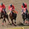 武蔵野S予想【2015年】|騎手データまとめ