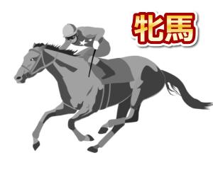 牝馬が得意な騎手を調べてみました