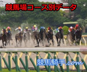 阪神競馬場芝1400mリーディング騎手データ